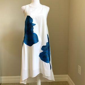 Anthropologie Dress XS